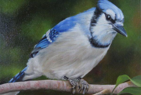 L'observateur - Artiste Peintre - Guylaine Ruel