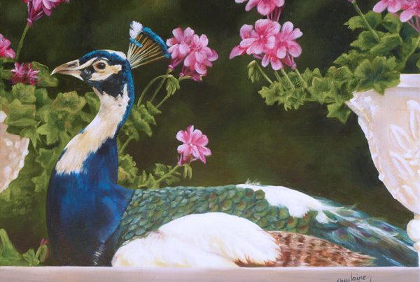 Le paon - Artiste Peintre - Guylaine Ruel