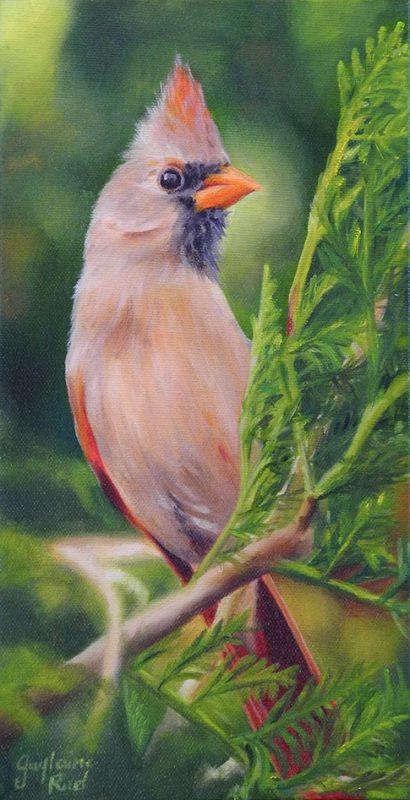 Cardinal femelle - Artiste Peintre - Guylaine Ruel