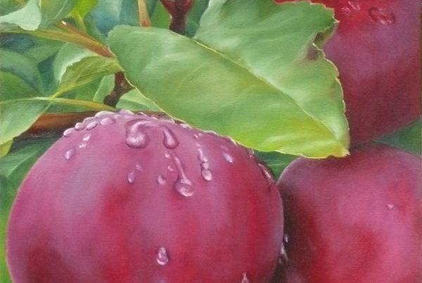 Rosée du matin - Artiste Peintre - Guylaine Ruel